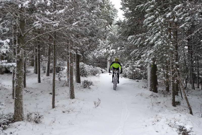 fatbike-fat-bike-alquiler-rutas-excursiones-pirineos-cerdanya-lloguer-pirineus-bici-neu-nieve